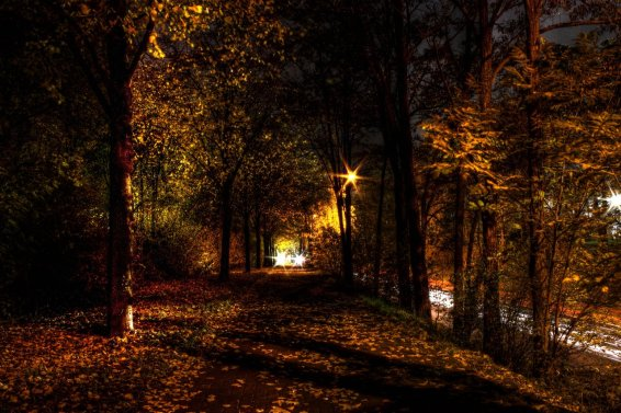 autumn_night_hdr_by_kaldrax-d4f65ab