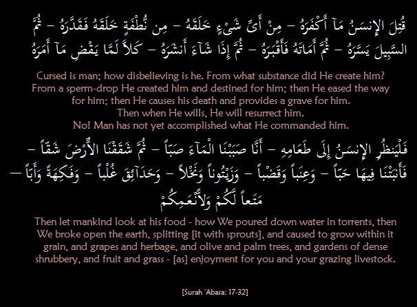Ayaat 17-32