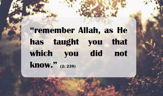 remember Allah as He has taught you